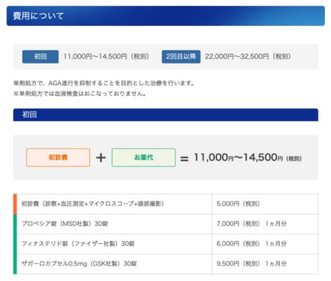 公式サイト参照:単剤処方の費用